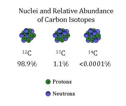 Carbon dating uses the isotope of carbon known as